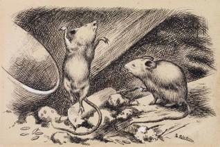 """Theodor Kittelsen, 1884 """"Og så ble hun ør i toppen og fikk det i føttene, så hun tok til å renne og springe fra den ene øltønna og opp på den andre  Til """"""""""""""""Hjemmusen og Fjeldmusen"""""""", P. Chr. Asbjørnsen og J. Moe, Eventyrbog for Børn. Norske Folkeeventyr,  København: Gyldendal, 1884"""""""